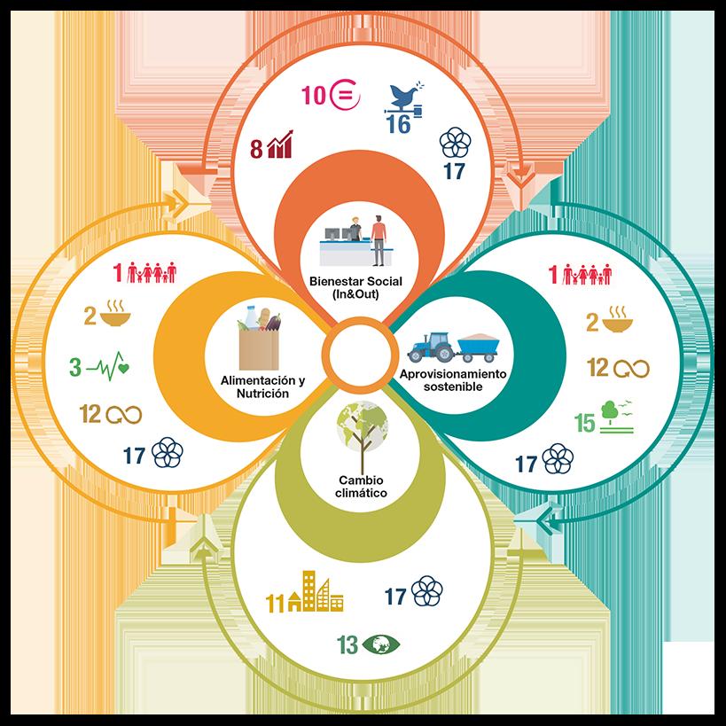 grafico ODS