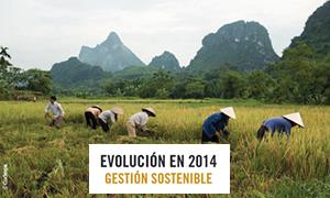Informe RSE 2014