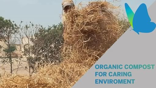 Organic compost for caring the planet